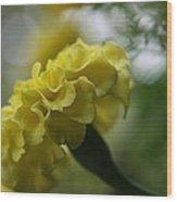 Natural Ruffles Wood Print