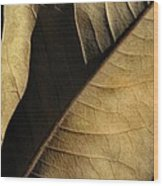 Natural Seduction Wood Print