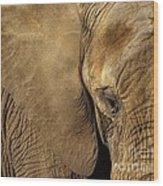 Natural Sepia Wood Print
