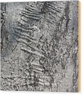 Natural Texture_1 Wood Print by Halyna  Yarova