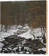 Naturally Minnesota Wood Print