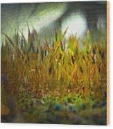 Nature #10 Wood Print