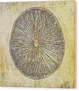 Nature Abstract 1 Wood Print