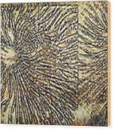 Nature Abstract 2 Wood Print