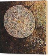Nature Abstract 22 Wood Print