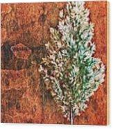 Nature Abstract 48 Wood Print