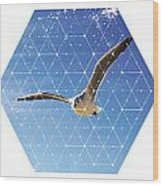 Nature And Geometry - The Seagull Wood Print
