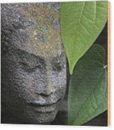 Nature Cambodia Siem Reap 03 Wood Print