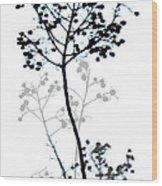 Nature Design Black And White Wood Print
