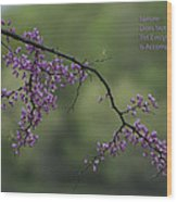 Nature Does Not Hurry Blossoms In Purple Wood Print