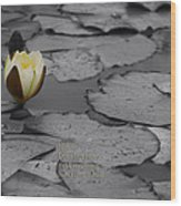 Nature Does Not Hurry Waterlily Wood Print