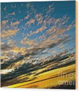 Nature Grasping Wood Print by Q's House of Art ArtandFinePhotography