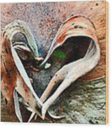 Nature Has A Heart  Wood Print