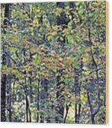 Nature In Autumn 2012 Wood Print