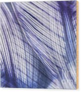 Nature Leaves Abstract In Blue And Purple Wood Print