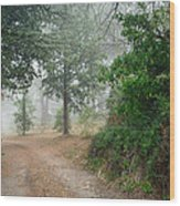 Nature Of Provence Wood Print