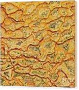 Nature Pattern Iron Oxide Mineral Sediment Crust Wood Print