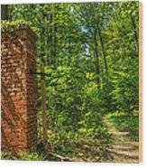 Nature Reclaims Wood Print