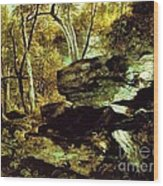 Nature Study Rocks And Trees Wood Print