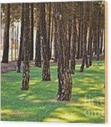 Nature Walk Wood Print