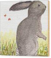 Nature Wild Rabbit Wood Print