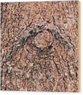Nature's Abstract Eye Wood Print