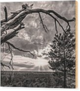 Natures Arch Wood Print