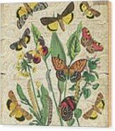 Natures Beauty-no.1 Wood Print
