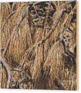 Nature's Brooms Wood Print