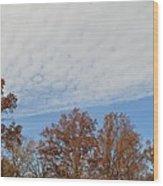 Nature's Brush Strokes Wood Print