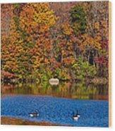 Natures Colorful Autumn Wood Print