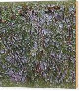 Natures Crystals Wood Print