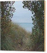 Nature's Door Wood Print by Margaret McDermott