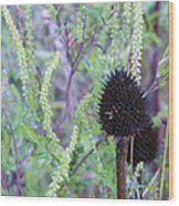 Natures Easter Boquet Wood Print