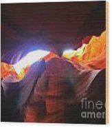 Natures Flare For Art Wood Print
