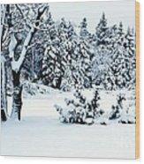 Natures Handywork - Snow Storm - Snow - Trees 2 Wood Print