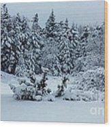 Natures Handywork - Snowstorm - Snow - Trees Wood Print