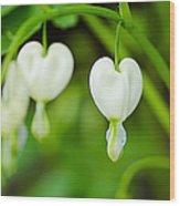 Nature's Hearts Wood Print