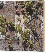 Nature's Mosaic Wood Print