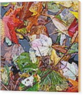 Nature's Paintbrush Wood Print