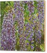 Natures Perfume Wood Print
