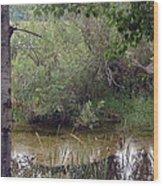 Nature's Pond Wood Print