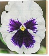 Nature's Purple Angel Wood Print