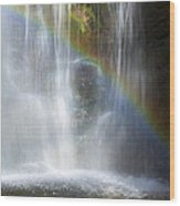 Natures Rainbow Falls Wood Print