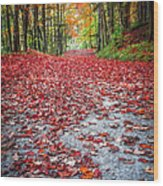 Nature's Red Carpet Wood Print