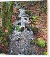 Nature's Rush Wood Print