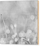 Natures Sparkle Dewdrops In Sunlit Grass Black And White Wood Print