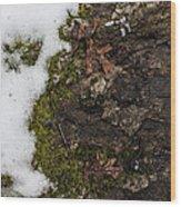 Nature's Still Life Wood Print