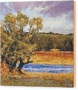 Nature's Trail - Ridgefield Wood Print