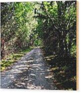 Nature's Trail Wood Print